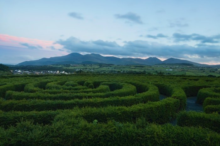 Green hedge maze in the country