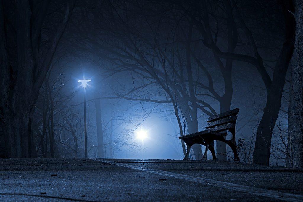 creepy park at night time.