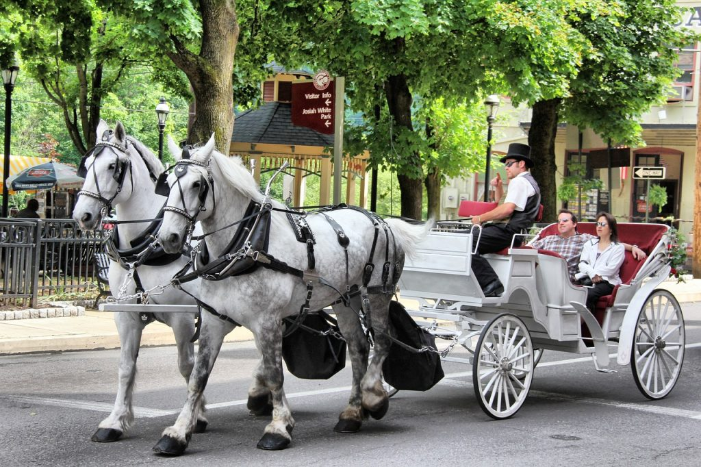Man and woman on a horse and carriage ride with a driver in a top hat