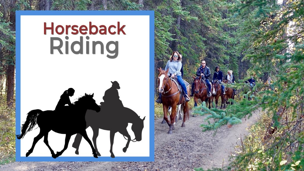 Group of people horseback riding in the forest on a trail