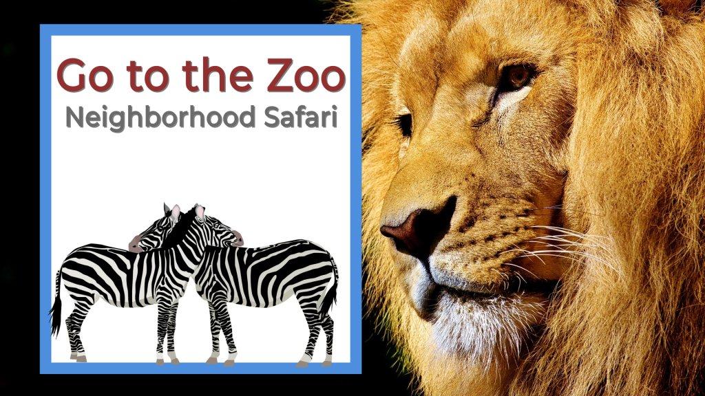 Go to the Zoo neighborhood safari lion looking at zebras