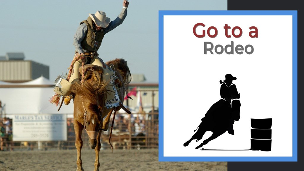 Go to a rodeo cowboy on the back of a bronco